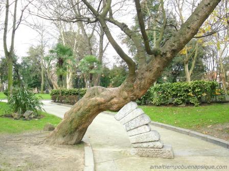 Árbol en parque de Oviedo